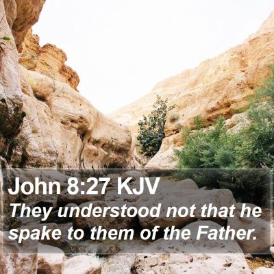 John 8:27 KJV Bible Verse Image
