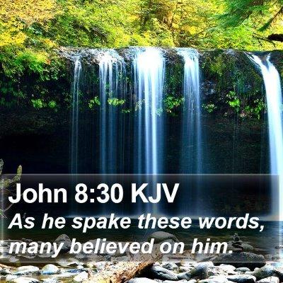 John 8:30 KJV Bible Verse Image