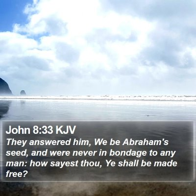 John 8:33 KJV Bible Verse Image