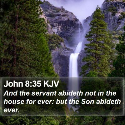 John 8:35 KJV Bible Verse Image