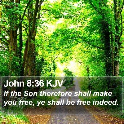 John 8:36 KJV Bible Verse Image