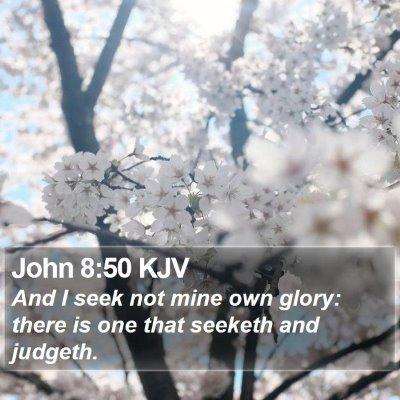 John 8:50 KJV Bible Verse Image