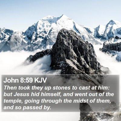 John 8:59 KJV Bible Verse Image