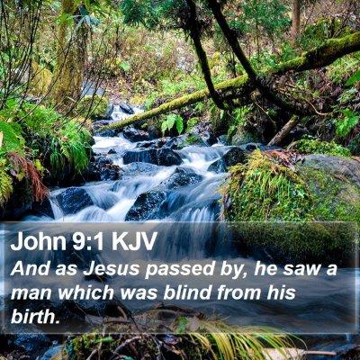 John 9:1 KJV Bible Verse Image