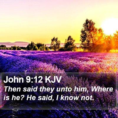 John 9:12 KJV Bible Verse Image