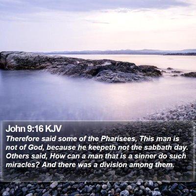 John 9:16 KJV Bible Verse Image