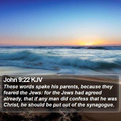 John 9:22 KJV Bible Verse Image