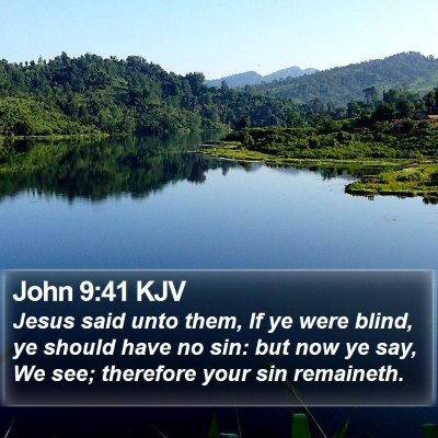 John 9:41 KJV Bible Verse Image