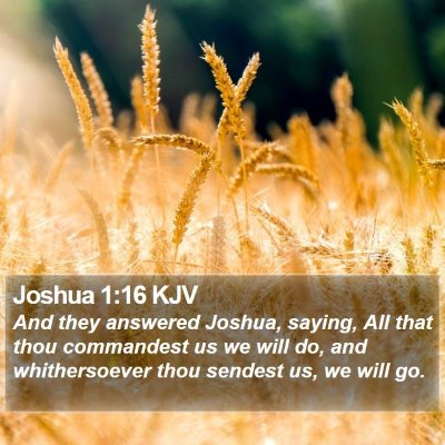 Joshua 1:16 KJV Bible Verse Image