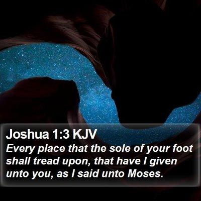 Joshua 1:3 KJV Bible Verse Image