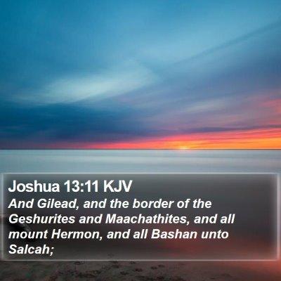 Joshua 13:11 KJV Bible Verse Image