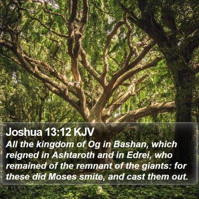 Joshua 13:12 KJV Bible Verse Image