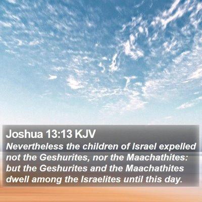 Joshua 13:13 KJV Bible Verse Image