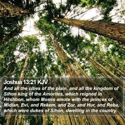 Joshua 13:21 KJV Bible Verse Image