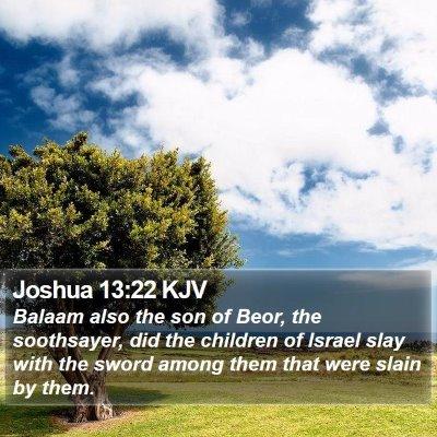 Joshua 13:22 KJV Bible Verse Image