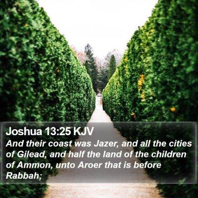 Joshua 13:25 KJV Bible Verse Image