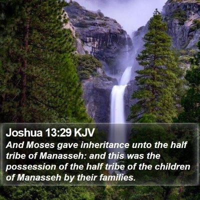 Joshua 13:29 KJV Bible Verse Image