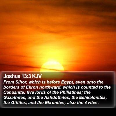 Joshua 13:3 KJV Bible Verse Image