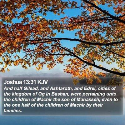 Joshua 13:31 KJV Bible Verse Image