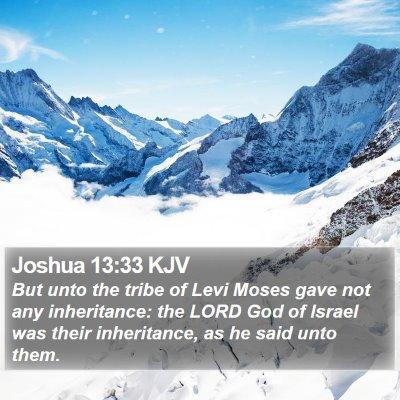 Joshua 13:33 KJV Bible Verse Image