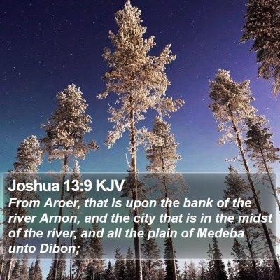 Joshua 13:9 KJV Bible Verse Image