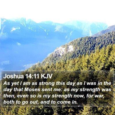 Joshua 14:11 KJV Bible Verse Image