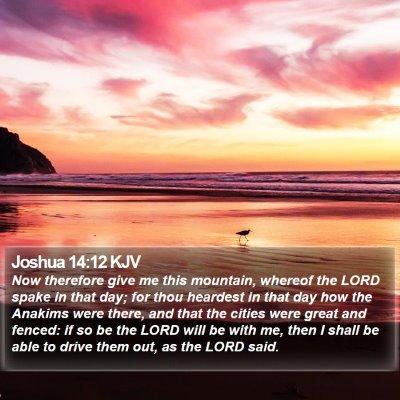 Joshua 14:12 KJV Bible Verse Image