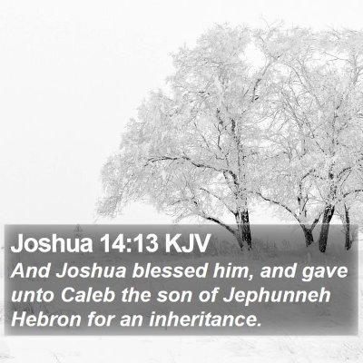 Joshua 14:13 KJV Bible Verse Image