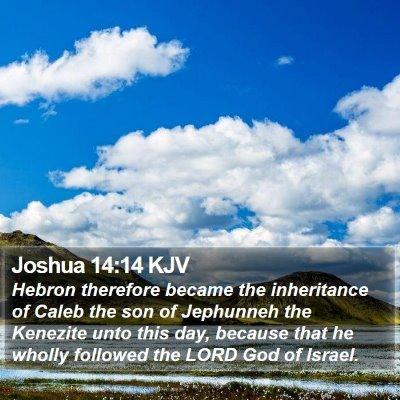 Joshua 14:14 KJV Bible Verse Image