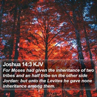 Joshua 14:3 KJV Bible Verse Image