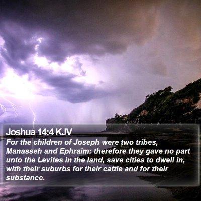 Joshua 14:4 KJV Bible Verse Image