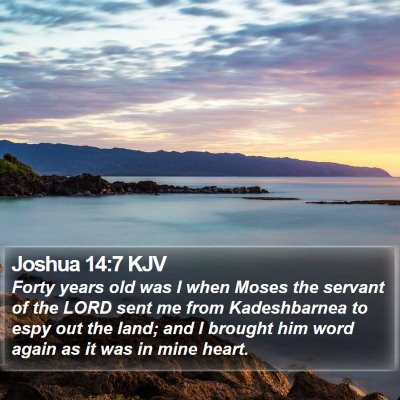 Joshua 14:7 KJV Bible Verse Image