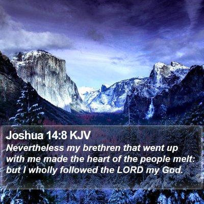 Joshua 14:8 KJV Bible Verse Image
