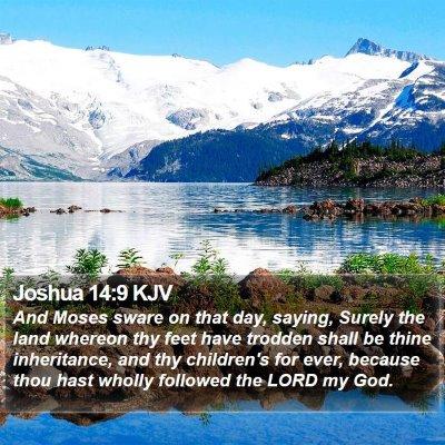Joshua 14:9 KJV Bible Verse Image