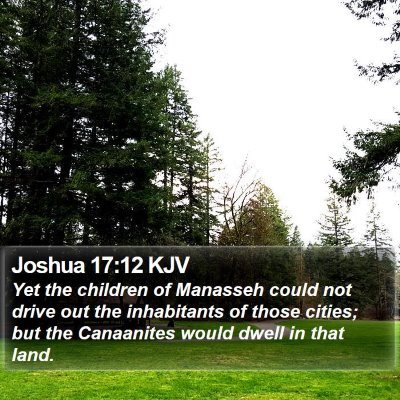 Joshua 17:12 KJV Bible Verse Image