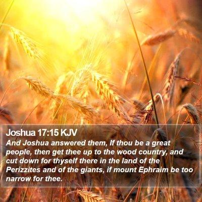Joshua 17:15 KJV Bible Verse Image