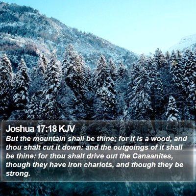 Joshua 17:18 KJV Bible Verse Image