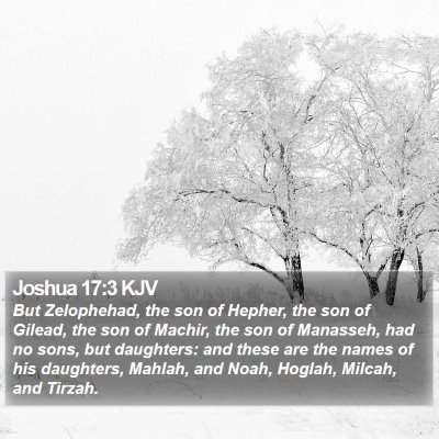 Joshua 17:3 KJV Bible Verse Image