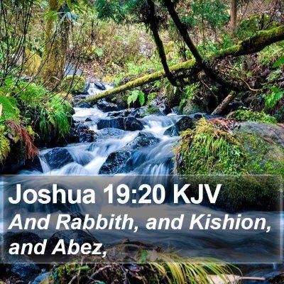 Joshua 19:20 KJV Bible Verse Image
