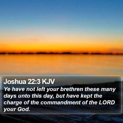 Joshua 22:3 KJV Bible Verse Image