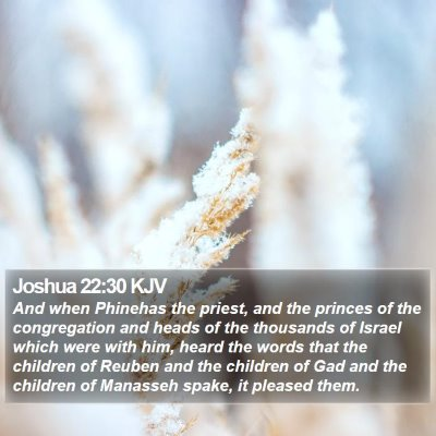 Joshua 22:30 KJV Bible Verse Image
