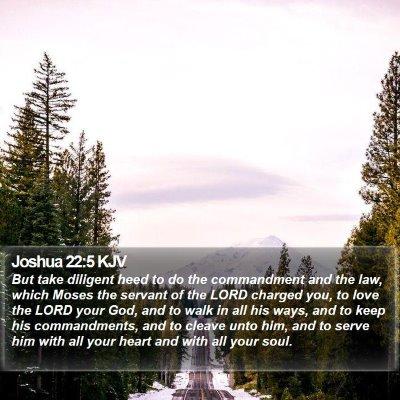 Joshua 22:5 KJV Bible Verse Image