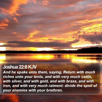 Joshua 22:8 KJV Bible Verse Image