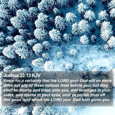 Joshua 23:13 KJV Bible Verse Image