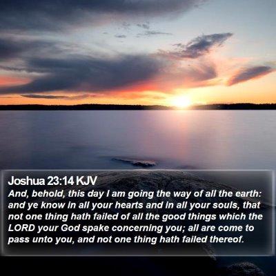 Joshua 23:14 KJV Bible Verse Image