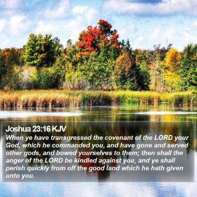 Joshua 23:16 KJV Bible Verse Image