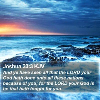 Joshua 23:3 KJV Bible Verse Image