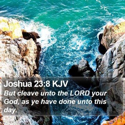 Joshua 23:8 KJV Bible Verse Image
