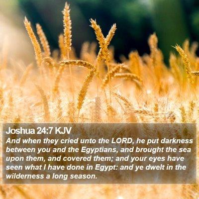 Joshua 24:7 KJV Bible Verse Image