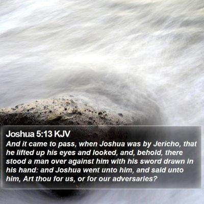 Joshua 5:13 KJV Bible Verse Image